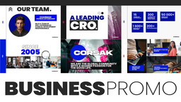 Business_promo_company