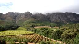 남아프리카 공화국 와인랜드 전경