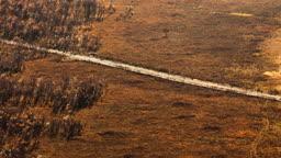 중국 몽골 내륙 지방 황금 대초원