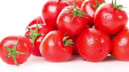 신선한 방울 토마토들