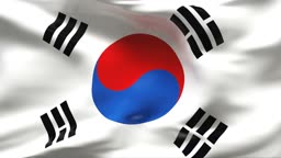 Textured SOUTH KOREA cotton flag with wrinkles and seams