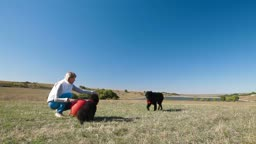 Young woman training the Newfoundland dogs outdoors