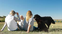 People enjoying in the nature with their Newfoundland dogs, rear view