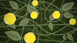 Dynamic graphic animation using paper cutout styled elements to illustrate a bush of growing coins. High definition 1080p. This is one of a suite of simple paper cutout style animated illustrations which have similar dynamics. Please check my portfolio fo