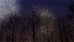 Looping Animation of Fireworks Lighting Up a Winter Sky