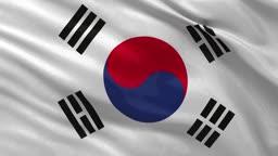 Sndkorea Nationalflagge im Wind. Endlosschleife.