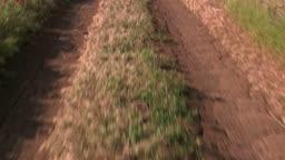 Car driving on dirt road through the field POV