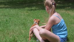 Little girl with her american staffordshire terrier puppy dog on a grass