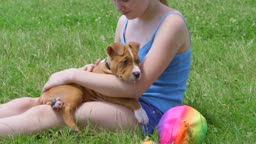 Child with her american staffordshire terrier puppy dog outdoor