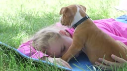Little girl with sleepy puppy dog lying on the grass in summer day