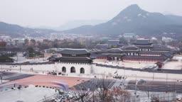 서울 종로구 경복궁 광화문 낮 풍경