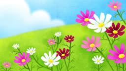 a10538164_동산에서 코스모스 꽃을 타고 노는 한 소녀