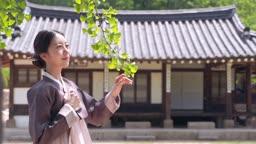 고택 앞 전통 한복 입고 나뭇잎을 바라보는 여자