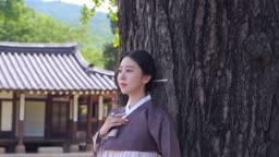 나무에 기대고 있는 전통 한복 입은 여자