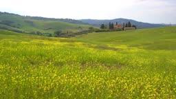 이탈리아 토스카나 발도르차평원 야생화 봄 풍경