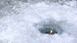 강원도 홍천군 겨울 저수지 낚시대에 잡힌 빙어들