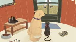 주인을 기다리며 창가를 바라보고 있는 개와 고양이