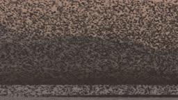 전남 해남군 날아다니는 가창오리떼 모습