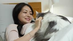 집콕문화 집 침실에서 누워 고양이와 함께 호캉스 즐기는 젊은여자 모습