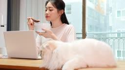 집에서 고양이와 함께 재택근무 하며 시리얼 먹는 젊은여자 모습