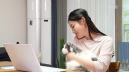 집에서 고양이와 함께 재택근무 하며 시간 보내는 젊은여자 모습