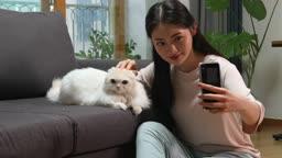 집에서 고양이와 함께 셀프카메라 촬영하는 젊은여자 모습