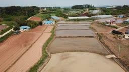 충남 태안군 농촌 논밭과 비닐하우스 봄 풍경