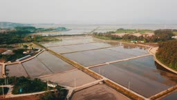 충남 태안군 농촌 논밭 봄 풍경