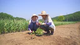 귀농귀촌 농사 밭에 앉아 대화 나누는 부부 모습