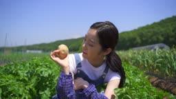 귀농귀촌 농사 밭에서 감자 보여주는 젊은여자 모습