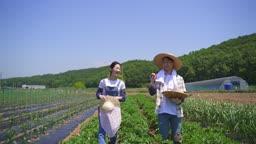 귀농귀촌 농사 밭에서 과일 바구니 들고 대화하며 걷는 부부 모습