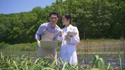 스마트팜 밭에서 전자기기로 체크하며 연구하는 연구원 모습