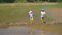 귀농귀촌 농사 밭에서 모종 들고 걷고 있는 부부 모습