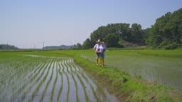 귀농귀촌 농사 밭에서 바구니 들고 걷고 있는 부부 모습