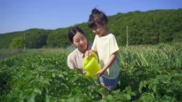 팜캉스 농촌 밭에 물조리개로 물주는 엄마와 딸 모습