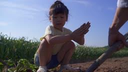 팜캉스 농촌 밭에서 밭갈이하고 있는 어린이 모습