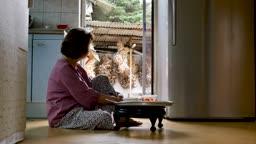 주방에 홀로 앉아 식사하는 할머니 모습