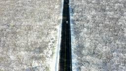 제주도 한라산 산간도로 겨울 풍경