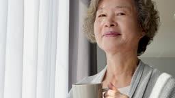 실버요양 커피잔 들고 카메라 응시하며 미소짓는 할머니 모습