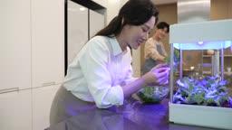 가정용 수경재배 상추 심는 젊은여자와 요리하는 젊은남자 모습