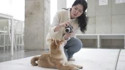 애견카페 강아지 사진을 찍어주는 견주 젊은여자 모습