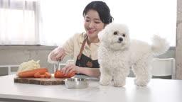애견카페 강아지 사료를 요리하는 견주 젊은여자 모습