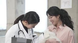 동물병원 강아지 진찰하는 수의사와 견주 젊은여자 모습