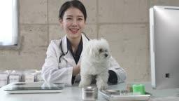 동물병원 강아지 카메라 응시하며 미소짓는 수의사 모습