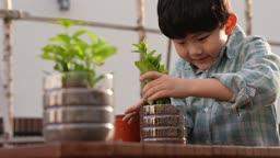 미래의 어린이 플라스틱 페트병을 재활용하여 모종 옮겨 심는 초등학생 모습