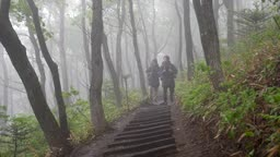 백팩킹 등산하는 젊은남자 모습